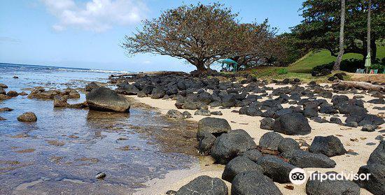 Puu Poa Beach2