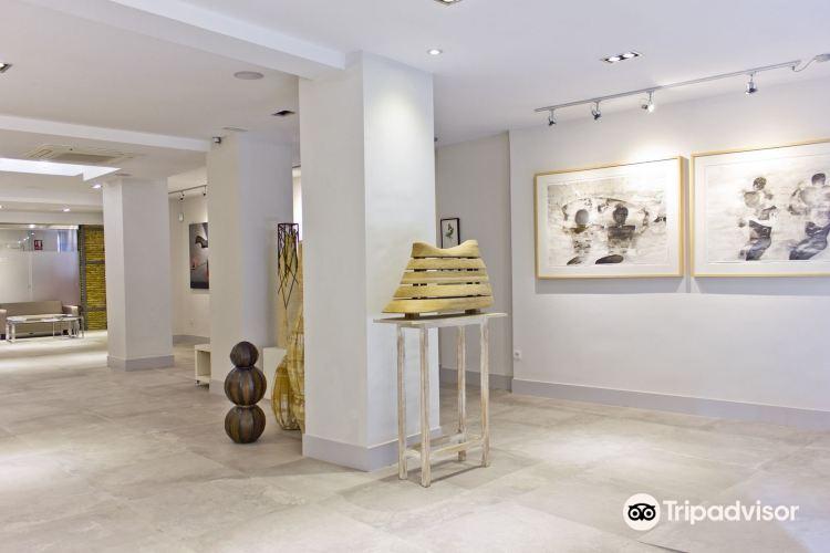 Shiras Galeria