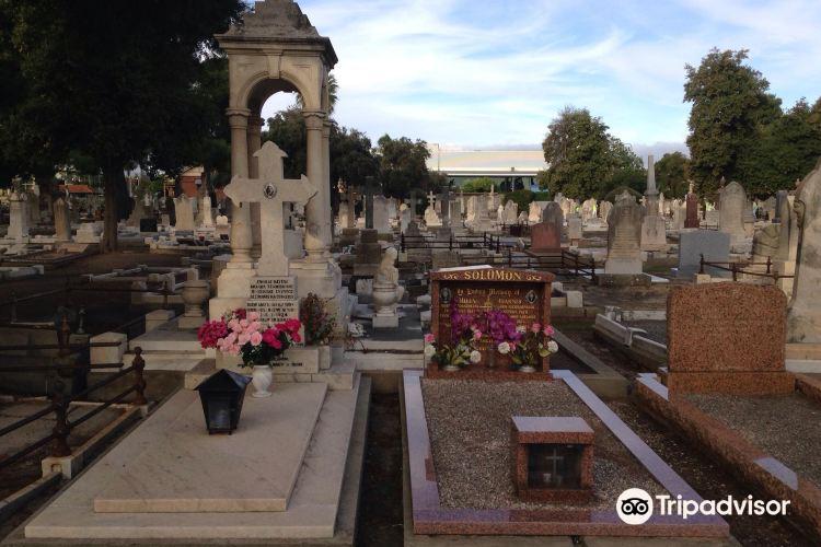West Terrace Cemetery2