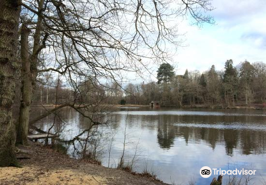 Buchan Country Park3