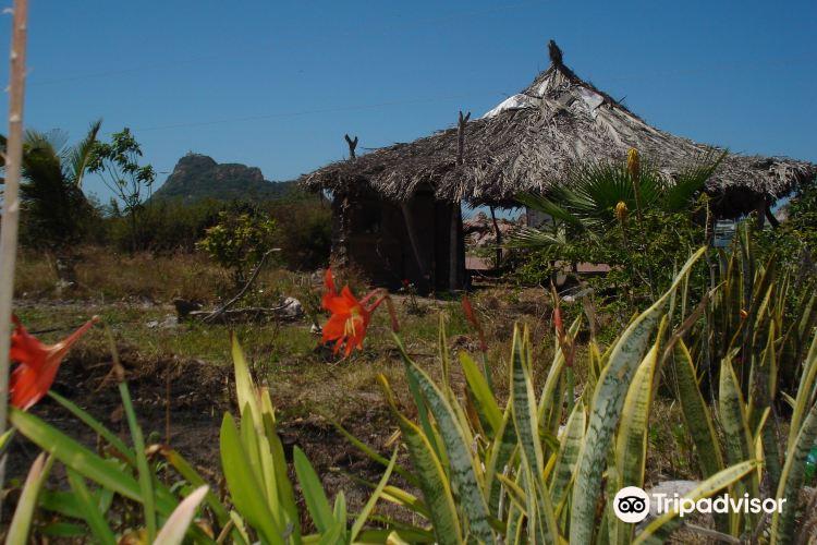 Isla de Venado4