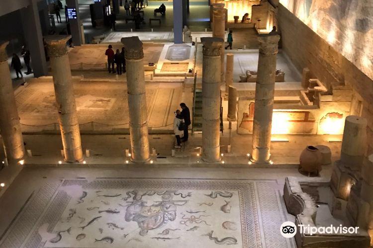 Zeugma Mosaic Museum1