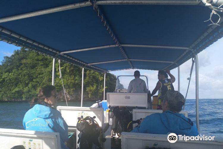 Palau Dive Adventures4