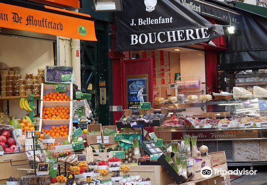 Succulent-Paris