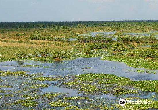 Kalamatiya Bird Sanctuary1