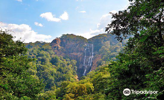 Udzungwa Mountains National Park3
