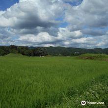 栃木县图片