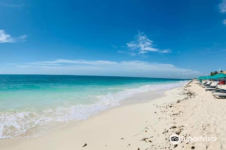 Playa Marlin2