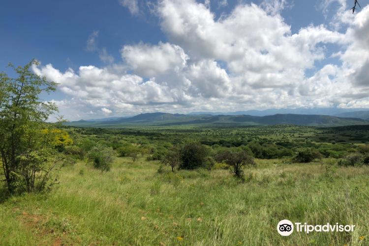Nechisar National Park4