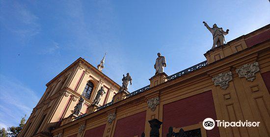 Palacio de San Telmo2
