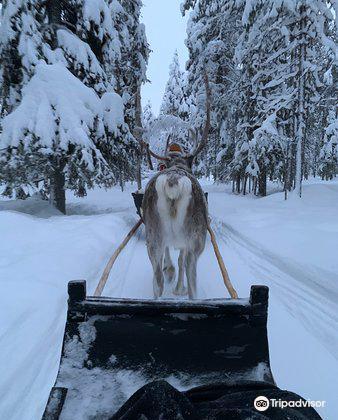 Ounaskievari Reindeer Farm2