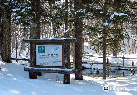 Izuminomori Raiun Park1