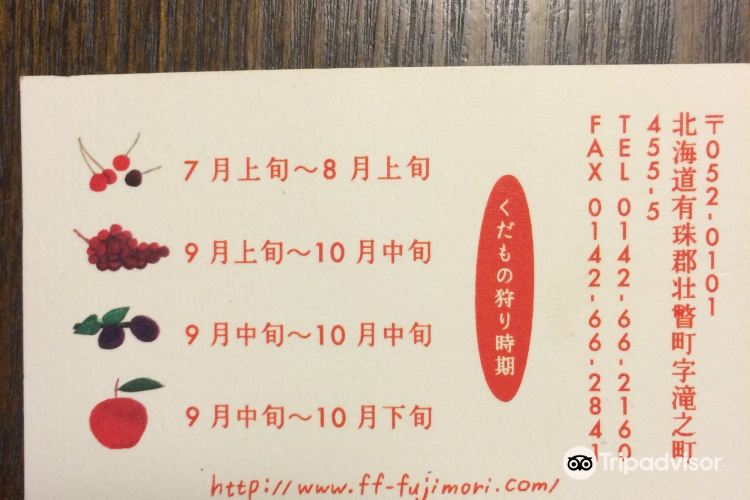 Fujimori Orchards4