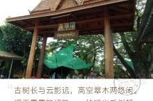 柬埔寨暹粒—大榕树民俗文化村 2017年7月23日,我们一行人来到大榕树民俗文化村参观,了解柬埔寨农