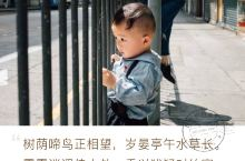 香港街头故事