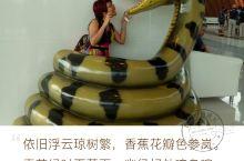 泰国蛇毒研究中心 这家蛇毒中心,挺有趣的。展馆布置很有特色,门口的大蟒蛇好形象!我忍不住跳下蛇身圈出