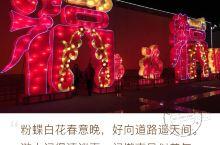 2017年豫西三门峡市陕州地坑院灯会 先声明这是去年的,今年也有灯展。因陕州地坑院景区距离三门峡市区