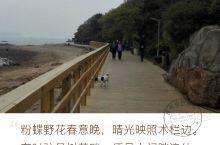 太平角的半日悠游 羡慕青岛人民,坐拥城中心的海滩美景 太平角公园的栈道,是青岛四十余公里沿海步行栈道