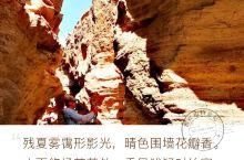 罗布泊雅丹大峡谷