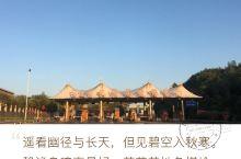 山西省运城市垣曲县皋洛乡民兴村贾山组 又是一个十年,妳在山西边,我在河南边。  廿年生死两茫茫  不