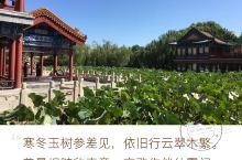 仲夏清静在龙潭,绿意盎然入公园 龙潭公园,位于北京市东城区(原北京市崇文区),国家4A级旅游公园。票