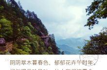 行走明月山 明月山位于赣西中部,以温泉闻名的大山,明月山由12座海拨千米以上大小山峰组成,是以