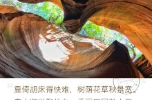 陕西甘泉雨岔大峡谷 陕西雨岔大峡谷是一个位于陕西省延安市甘泉县雨岔村的峡谷,几亿万年前,陕北发生过强
