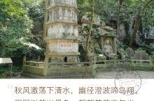 飞来峰景区 飞来峰以石刻造像闻名,更因灵隐寺为游客青睐。 这里还有一座纪念岳飞的翠微亭