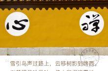 【秋游•九华】听梵音缭绕