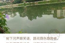 美丽的右江 广西百色市内有一条美丽的右江河即右江,是珠江水系西江干流之一的郁江中游河段的总称。起于百