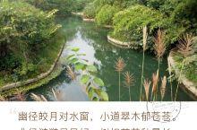 黔西南国庆亲子之旅六:游花溪公园,走青岩古镇 山水灵秀的花溪公园 2017年10月6日,国庆第六天。