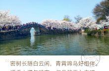 春日寻芳、鼋头渚 无锡鼋头渚是橫卧无锡太湖西北岸的一个半岛,因巨石突入湖中形状酷似神龟昂首而得名。鼋