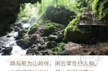 通灵大峡谷 通灵大峡谷和明仕田园、德天瀑布一起都是广西西南地区的景点,名气较后面俩差些,但是景区风景